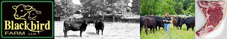 Blackbird Farm stand, 660 Douglas Pike, Smithfield (closed for winter) Black Angus beef, American Heritage Berkshire pork and organic, free-range RI Red eggs, local produce 401-232-2495