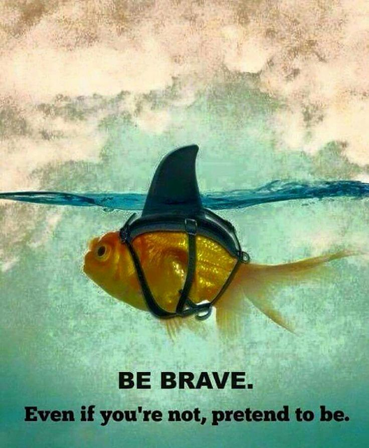 BE BRAVE! Bravery isn't about not being afraid....of course you are afraid!...It's about facing your fears despite your fear