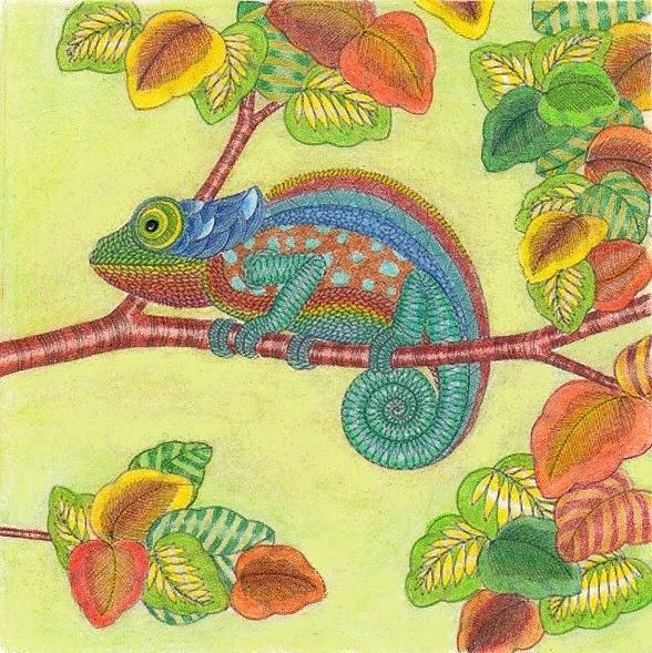 Adult Coloring Books Chameleons Animal Kingdom Vintage Chameleon Pages