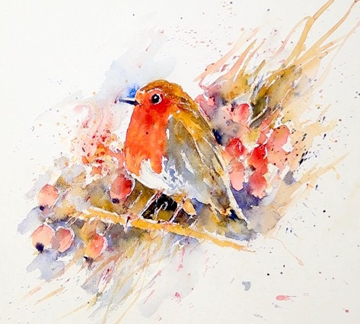 This Red Breasted Robin, in watercolour, is one of the lessons Joanne Boon Thomas painted for us the other day. Coming Soon to ArtTutor.com