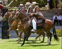 Festival del Caballo de Paso Peruano