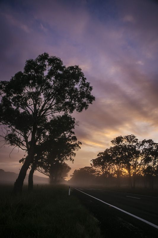 Sunrise - rays of light beaming through the mist across the highway in the bush