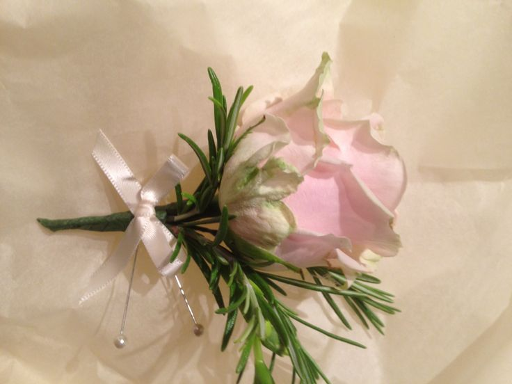 Buttonhole of Pink Rose with Rosemary finished with pink Satin Ribbon