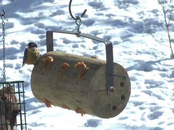 TiltASquirrel Bird Peanutbutter Feeder by KibbleDribbler on Etsy