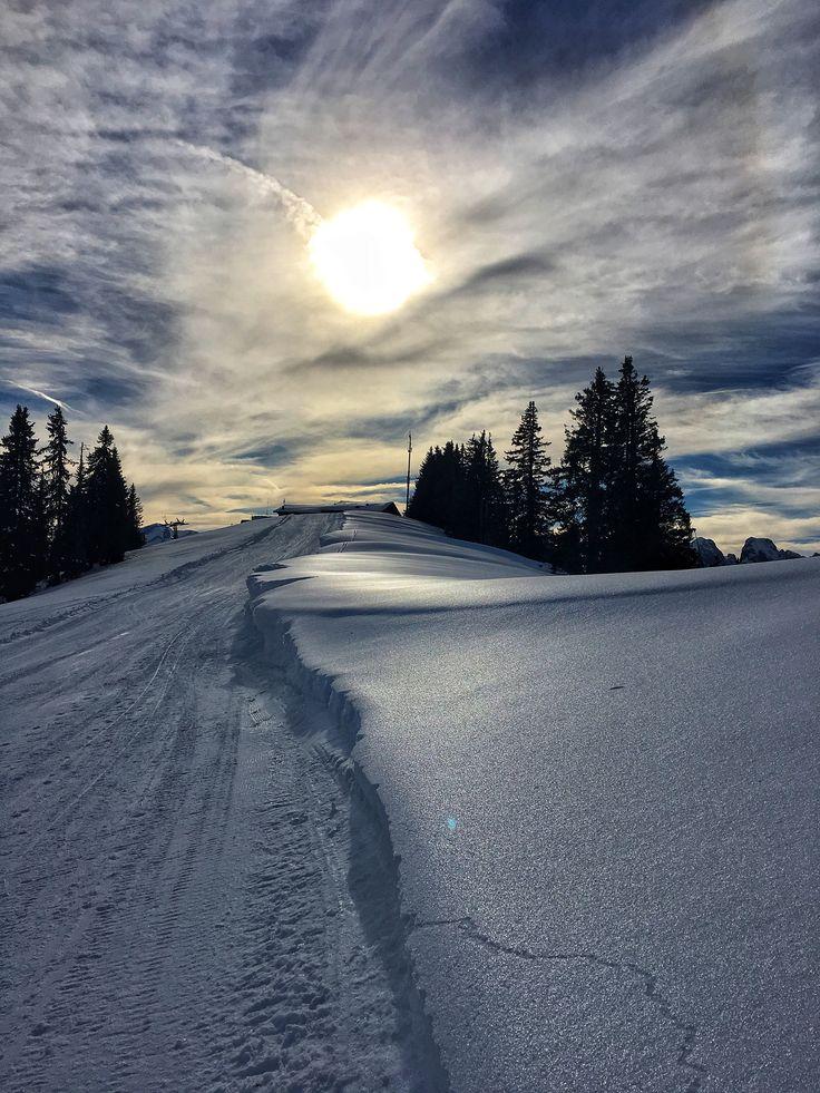 Sonnenschlittern. #winter #snow #sun #light #nature #alps #photography