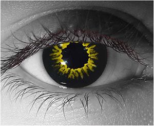 00c57eeb9b Black Wolf Novelty Contact Lenses
