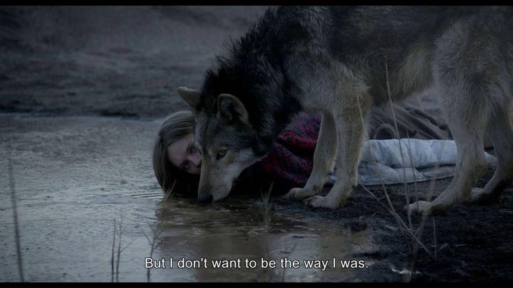 Nach Jeans (2001) und Das Herz ist ein dunkler Wald (2007) ist Wild der dritte Langspielfilm, den die deutsche Schauspielerin Nicolette Krebitz in eigener Regie inszenierte. Das Drama handelt sich um eine eine jungen Frau , die einen Wolf fängt, um die eigenen Fesseln der zahmen Zivilisation zu sprengen. Ania (Lilith Stangenberg) ist verblüfft, als [ ]