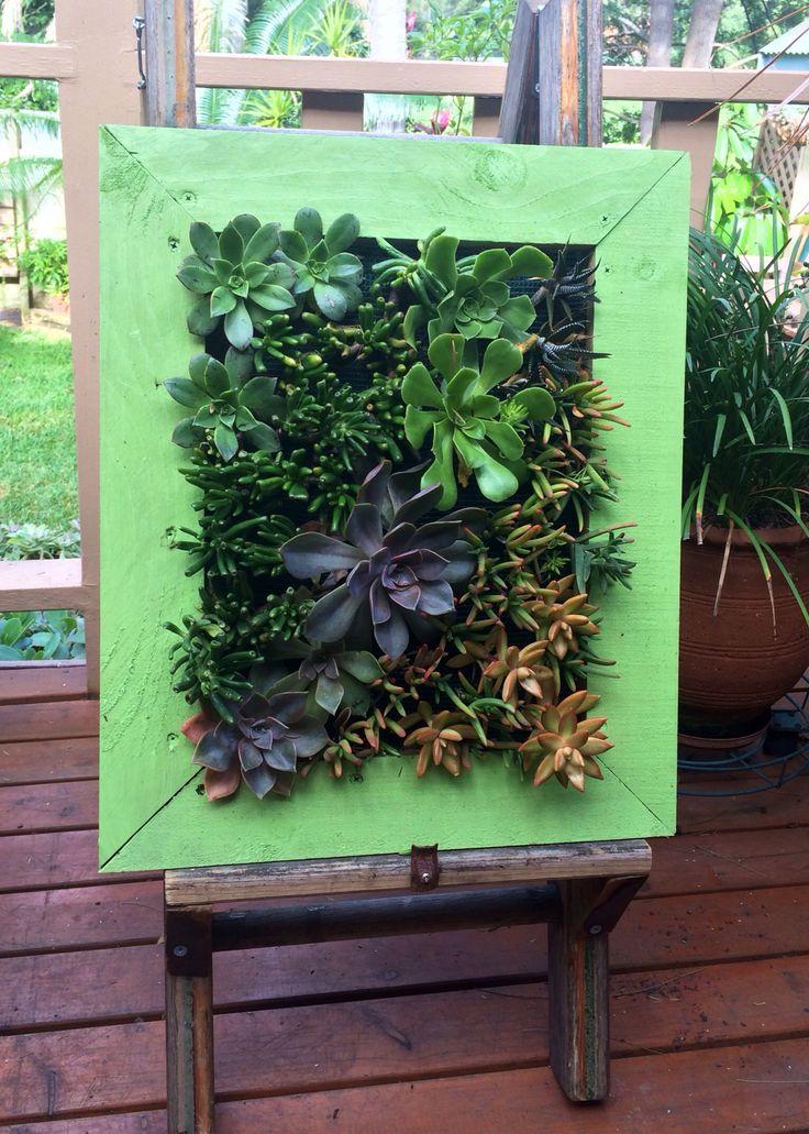 Succulent Living Wall