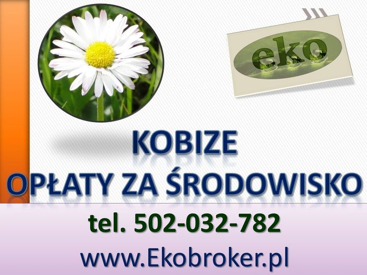 Kobize 2015, tel 502-032-782, opłaty za środowisko 2015, instalcja kobize, raporty, złożenie do krajowej bazy emisji raportu, obsługa firm, wypełnianie raportów Kobize, Obsługujemy klientów ze wszystkich województw: dolnośląskie, kujawsko-pomorskie, lubelskie, lubuskie, łódzkie, małopolskie, mazowieckie, opolskie, podkarpackie, podlaskie, pomorskie, śląskie, świętokrzyskie, warmińsko-mazurskie, wielkopolskie, zachodniopomorskie.
