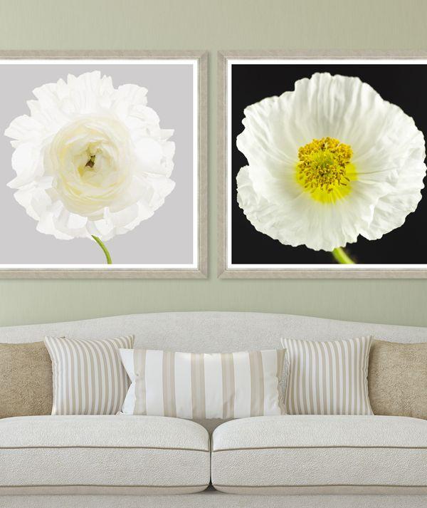 WHITE POPPY AND RANUNCULUS - Premium Framed Art by MINDTHEGAP