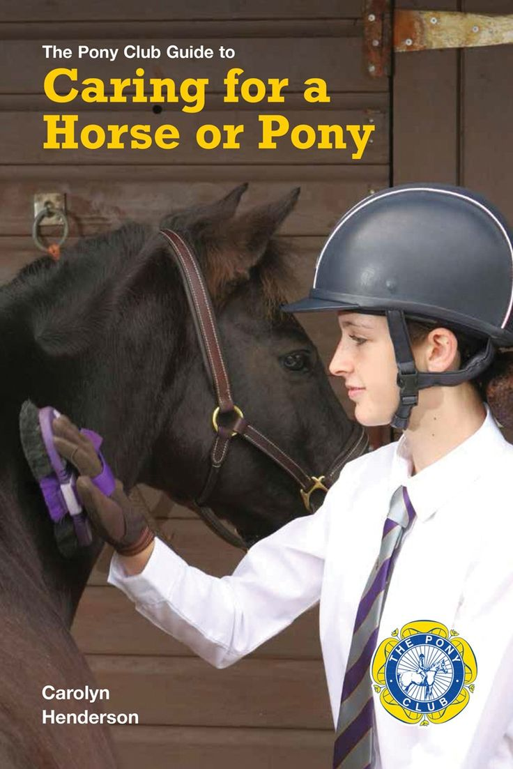 Caring for a Horse or Pony is the new name for one of The Pony Club's longest-lasting and most popular publications – Keeping a Pony at Grass – which was first published over fifty years ago. - See more at: http://www.quillerpublishing.com/new-releases/caring-for-a-horse-or-pony.html#sthash.C7Vf70OL.dpuf