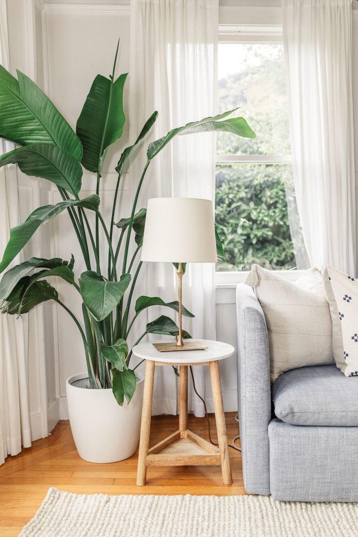 Piante Da Appartamento Moderno.Spring Apartment Updates Arredamento Casa Piante Da