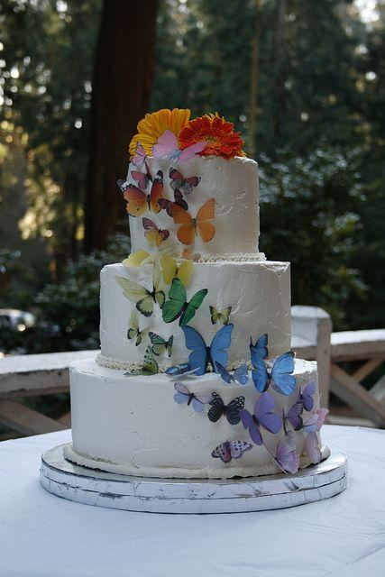 Rainbow Butterfly Wedding Cake Wedding Pinterest