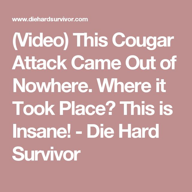 (Video) This Cougar Attack Came Out of Nowhere. Where it Took Place? This is Insane! - Die Hard Survivor