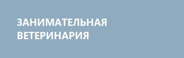 ЗАНИМАТЕЛЬНАЯ ВЕТЕРИНАРИЯ http://rusdozor.ru/2016/12/30/zanimatelnaya-veterinariya/  Дорогие* мои МАЛОросы, возомнившие ни с того ни с сего себя МЛАДОеврами. (*дорогие — в финансово-материальном исчислении). Каждый день вашего пребывания под наркотическим препаратом «Гиднисть» делает вас для нас в настоящем и в будущем всё дороже. Не понимаете о чём ...