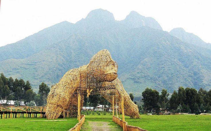 The site for the Kwita Izina ceremony (baby gorilla-naming) at Rwanda's Volcanoes National Park.