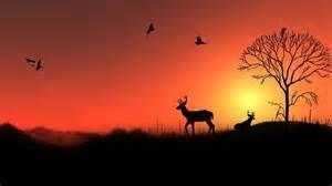 deer silhouette sunset - Bing Images