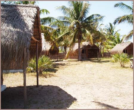 """#MangoBeachLodge in #TofoBeach!  #Tropical #beaches, #coconut #palm groves, pure paradise. This is the setting for #Mango #Beach - a #stylish lodge in popular #Tofo - one of the #worlds best dive #destinations. You are guaranteed the holiday of a #lifetime - whether you want #adventure and action, or a #relaxed #sun-drenched chill, or even a total """"pig-out"""" on #seafood.   #Backpacking #Hostels #Share #Africa #EastAfrica #Hosteling #Accommodation #fun #Exploring #Travel #AfricaTravel…"""