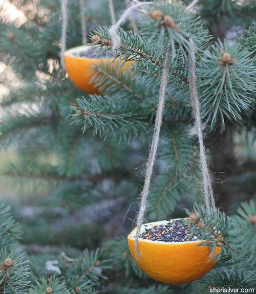 These orange-rind ornaments are beyond simple: Scoop the fruit, punch holes for twine, and fill with seed. Then hang and wait for the flock. Get the tutorial.   - GoodHousekeeping.com
