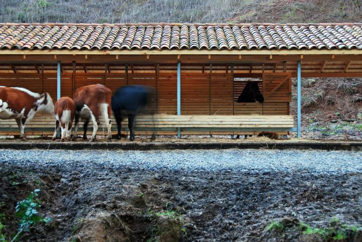 #Architecture in #Chile - #Stable by 57 Studio
