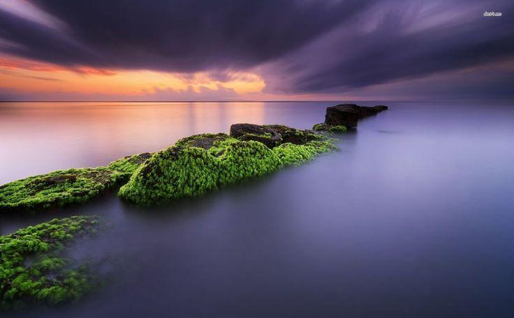 Mossy rocks in Matahari beach HD Wallpaper