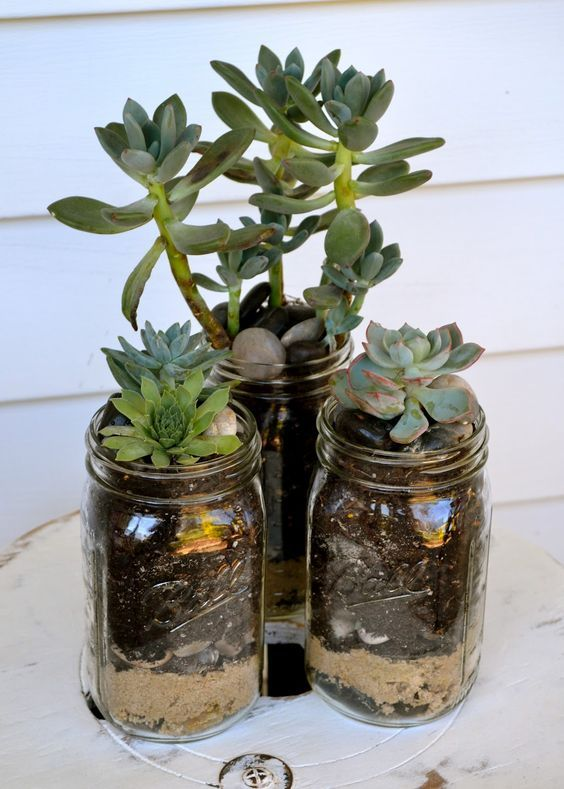 28 Cute Indoor Succulent Plant Decor Ideas To Beautify Your Home Molitsy Blog Mason Jar Succulents Succulent Planter Planting Succulents