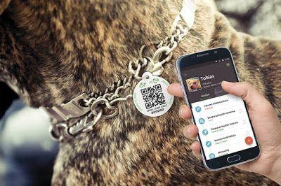 #AnimalVitae es el sitio que te permite tener el historial médico de tu mascota siempre a la mano. Es un resumen visual creado por veterinarios expertos donde podrás comprobar de un solo vistazo la evolución de tu mascota. ¿Aún no lo conoces? Aquí te lo presentamos ;)