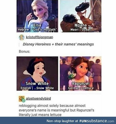 My favorite disney princess..Lettuce<< snow whte's name is just translated back into english?