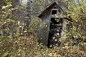 The ruins of an outhouse are surrounded by trees in a ghost town. Quesnel Forks, British Columbia, Canada (Getty Images)