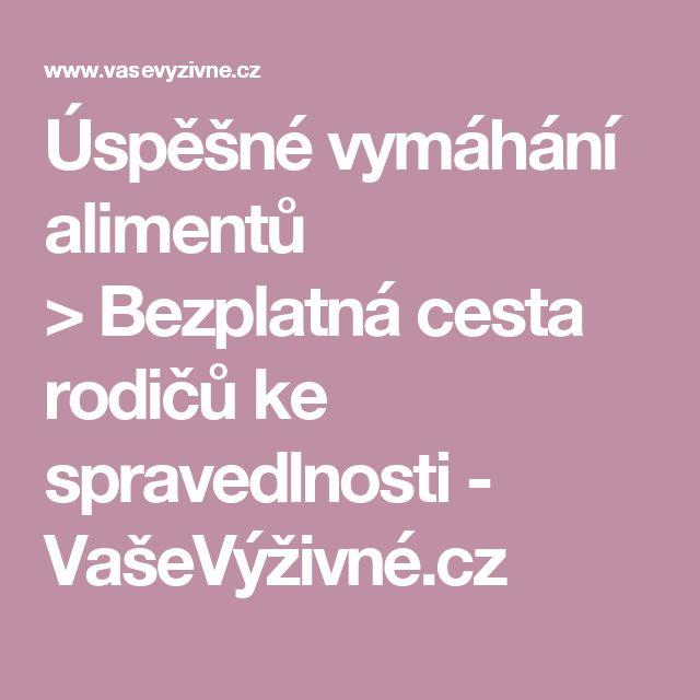 Úspěšné vymáhání alimentů >Bezplatná cesta rodičů ke spravedlnosti - VašeVýživné.cz