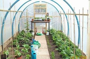 up-cycled green house
