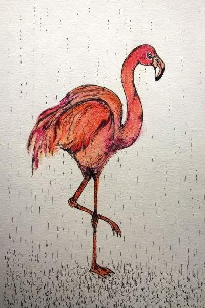 flamingo! ik ben wel tevreden over de kleur. Wie weet zie je deze flamingo binnenkort wel als kaart op mijn website www.brechtjeduijzer.nl