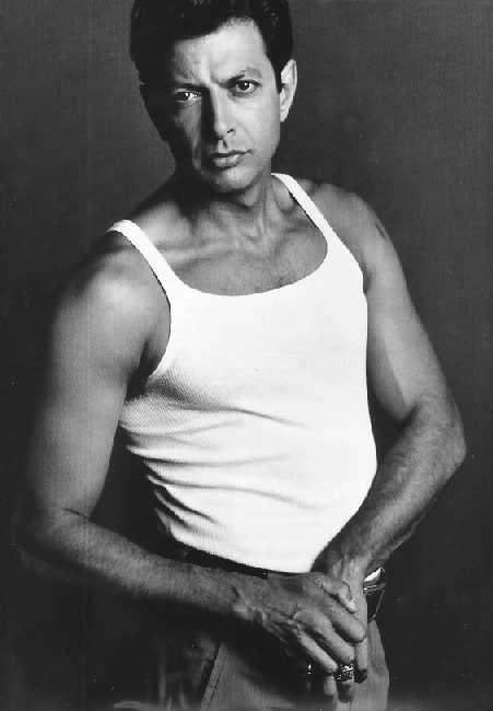 40 best images about Jeff Goldblum on Pinterest   Sexy ...