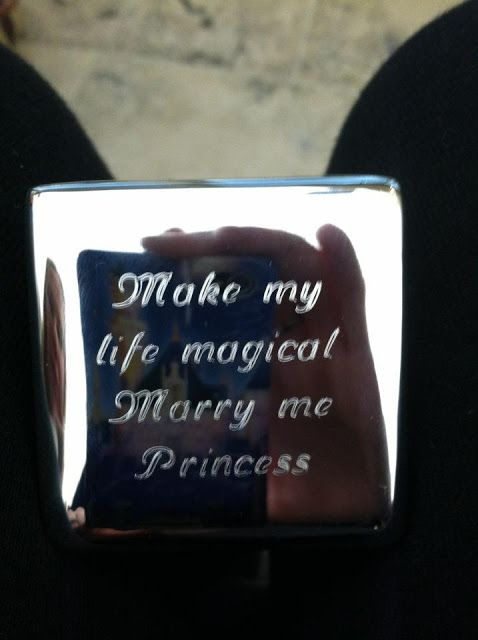 Disney themed proposal