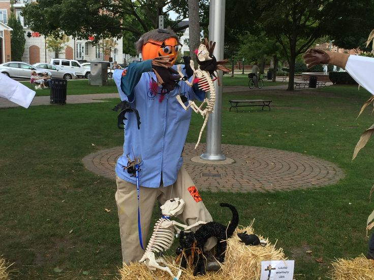 This page provides links for downloading the app. Veterinary Clinic.. Scarecrow Row Plymouth MI 2015
