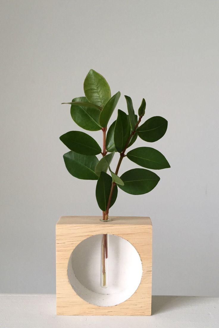 Sometimes all you need is sprig of simple greenery. And this mini vase, of course.