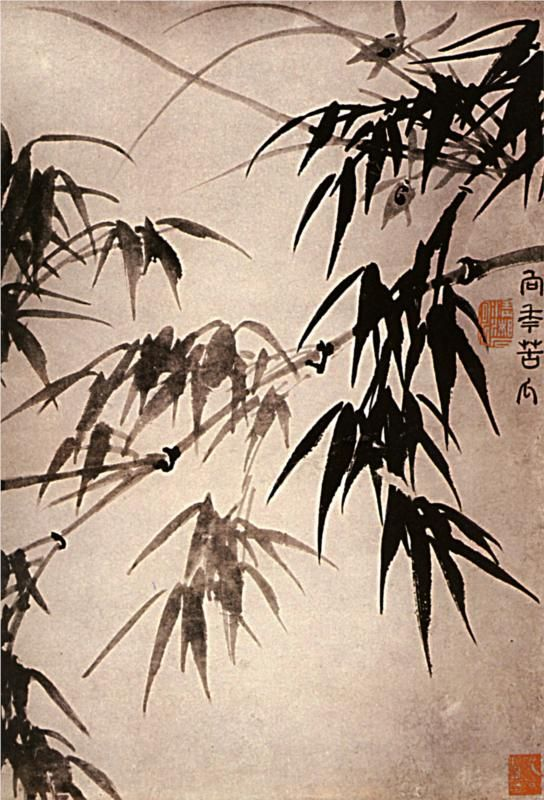 Shitao : Bamboo, 1656-1707