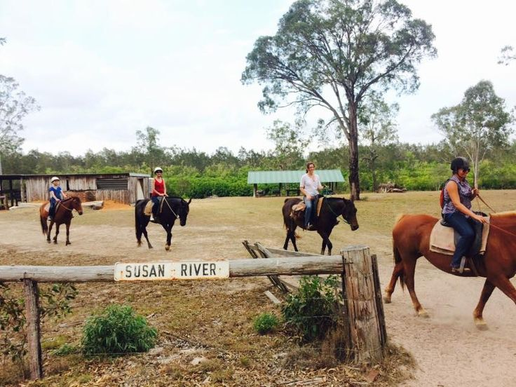 Leaving the picnic area at the Susan River after some refreshments during the horse ride.