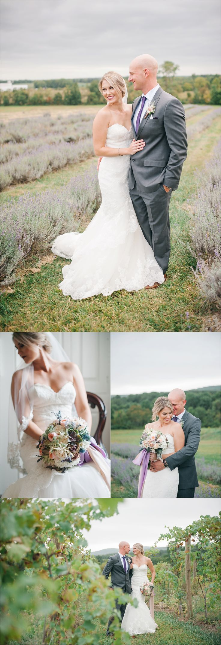 Springfield Manor Winery and Distillery wedding | vineyard bride and groom | winery wedding | Amanda Adams Photography | lavender fields