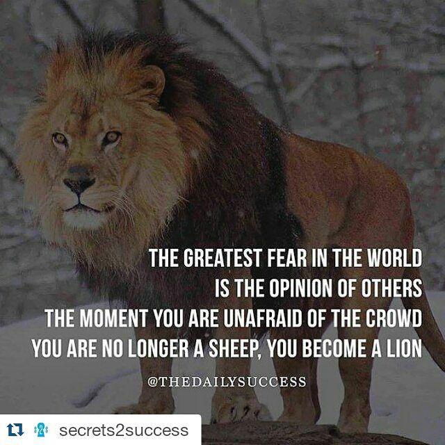 @bush1do @shaym @selenagomez @prettymofukkanamedshindy @realpaigewwe @50cent @kendalljenner #Business #Businessman #businessminded #Entrepreneur #Entrepreneurship #invest #investor #grind #grindmode #hustle #Hustler #Money #neverquit #neverstop #50cent #gunit #bmw #mercedes #paigewwe #shaymitchell #selenagomez #kendalljenner #bushido #shindy #Repost @secrets2success by arif_t_92