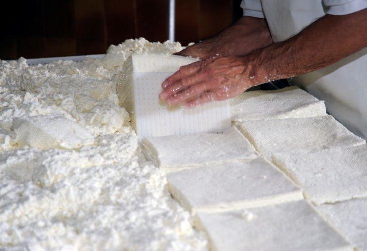 TOSELA DEL PRIMiERO - Si tratta di un formaggio fresco (una cagliata) tipico di Primiero, che va consumato entro 2-3 giorni dalla produzione. Viene prodotto con latte vaccino appena munto, in modo che resti intatta tutta la fragranza delle erbe dei pascoli di montagna conservando l' aroma del latte. La tradizione la propone tagliata a fette alte circa un dito, rosolata nel burro e servita in abbinamento con polenta e lucanica trentina.