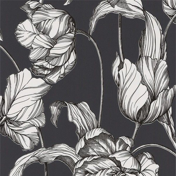 Graham & Brown Laurence Llewelyn-Bowen Harem Tulips Grey Wallpaper ($85) ❤ liked on Polyvore featuring home, home decor, wallpaper, black and white home decor, graham & brown, grey floral wallpaper, black white wallpaper и gray wallpaper