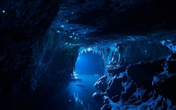 Truly a place that makes you realise the stunning beauty of mother nature. The lights you see in the picture are actually glowworms, just adding to the mesmerising effect of this North Island cave system. Its deep underground so we would advise you to bring a sweater, but even with the cold, this experience is definitely worth it.