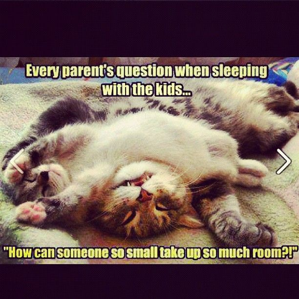 I love a bed hog - How can something so small take up so much room? lol #kids #quote
