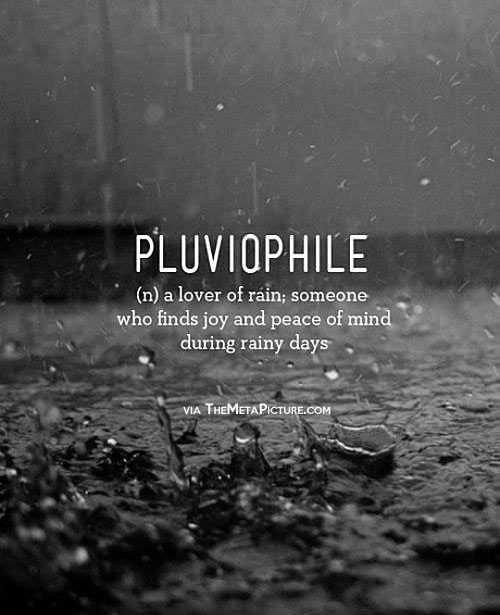 There's a Word for me! ...Who knew?    Pluviophile (n.) a lover of rain, someone who finds joy and peace of mind during rainy days.
