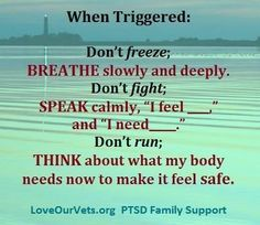 PTSD triggers are all around you,even though it may sometimes feel like PTSD symptoms come out-of-the-blue.Triggers can fall into 2 categories: Internal & External Triggers. Internal triggers are things that you feel or experience inside your body and include thoughts or memories, emotions, and bodily sensations (for example, your heart racing). External triggers are situations, people, or places that you might encounter throughout your day (or things that happen outside your body).