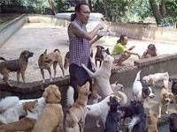 Berawal dari Modal Nekat, Kini Animal Defender Menjadi Penyelamat Bagi Banyak Anjing Terlantar