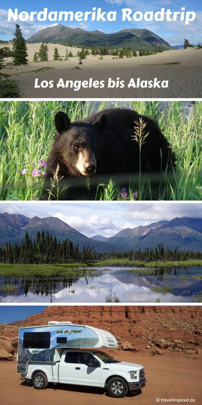 Auf unserem großartigen Nordamerika Roadtrip durch den Westen der USA und Kanada bis nach Alaska haben wir viele Nationalparks besucht, atemberaubende Landschaften gesehen und jede Menge wilde Tiere beobachtet. Jede Menge Infos & Tipps findest du in unseren Reiseberichten auf travelinspired.de! #nordamerika #roadtrip #truckcamper #alaska #rockymountains #kanada #wildlife #nationalparks #travelinspired #reisebericht #schwarzbär #camping