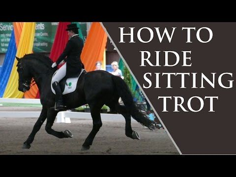 How to Ride Sitting Trot (without moving) - Dressage Mastery TV Ep3 - YouTube