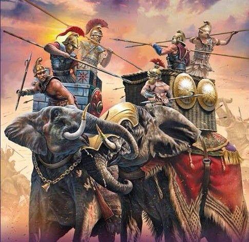 Selucid war elephants